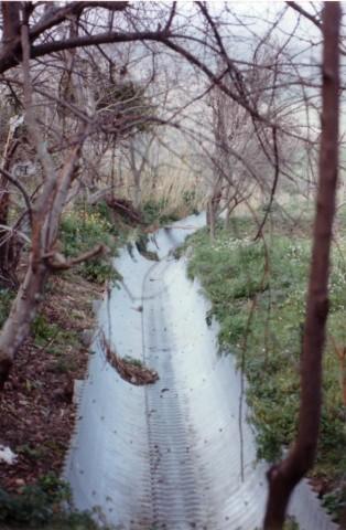 Comune di Basicò (ME), 1989